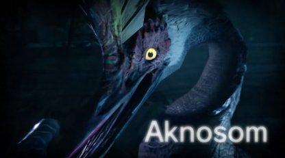 Aknosom