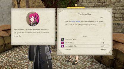 Anna's Shop Sidequest