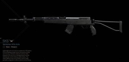 SKS Marksman Rifle Image