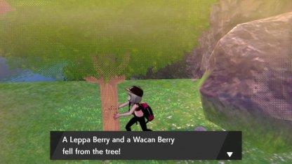Hammerlocke Hills wacan berry