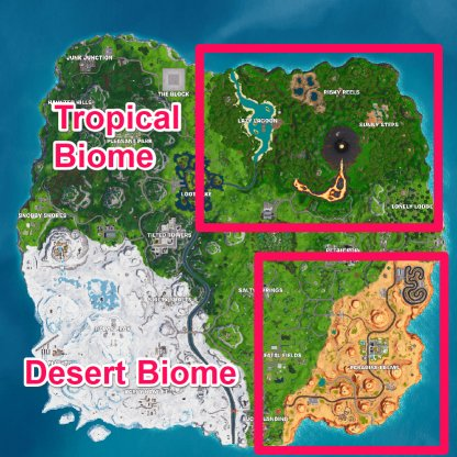 Coconut Location - Desert & Tropical Biome