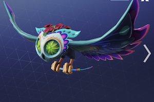 Glider skin Image SPIRIT
