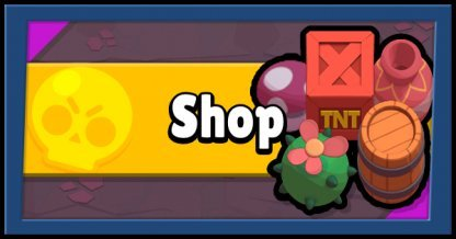 What You Can Buy In The Shop