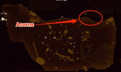 Acorn location