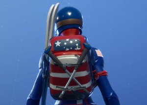 MOGUL SKI BAG (USA) Image