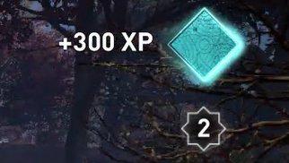 Rewards Experience