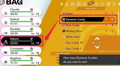 Feed Pokemon Dynamax Candy
