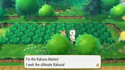 Kakuna Master Trainer