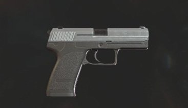 Purchase Infinite MUP Handgun After First Run