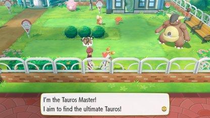 Tauros Master Trainer
