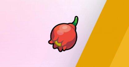 Pomeg Berry