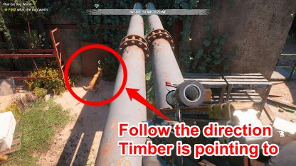 Head To Where Timber Is Pointing