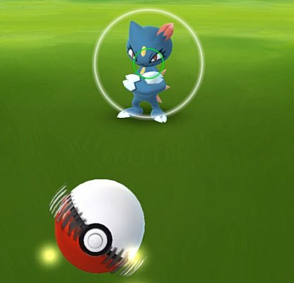 Pokemon GO Beginner Guide & Tips