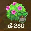 Pink-azalea