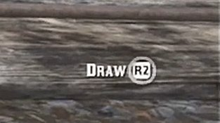 Red Dead Redemption 2 Duel Draw