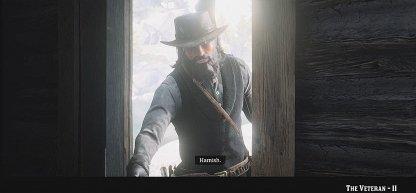 Red Dead Redemption 2 - The Veteran II