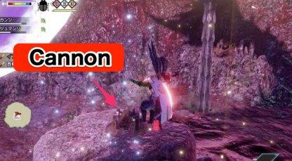 Narwa Cannon