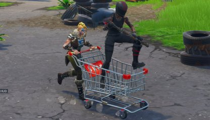 What is the Shopping Cart