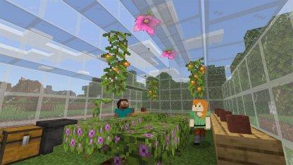 Minecraft 1.17 New Content