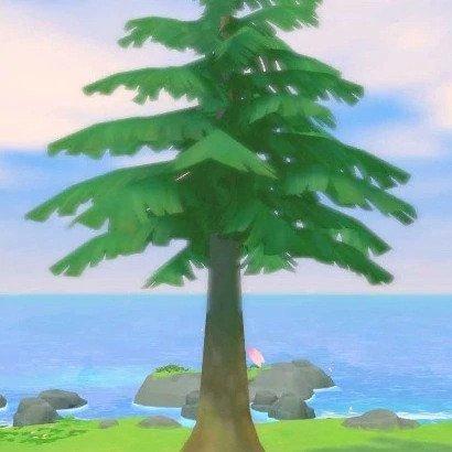 Tree type 3
