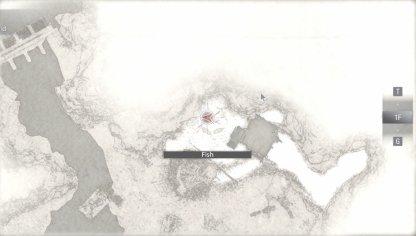 Fish Location 4