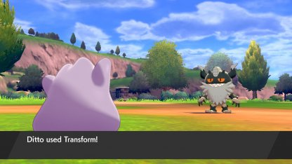 Ditto Transform