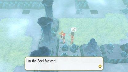 Seel Master Trainer
