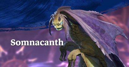 Somnacanth