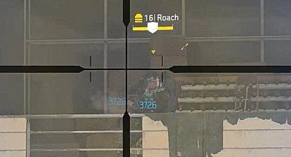 Roach Has Very Tough Armor