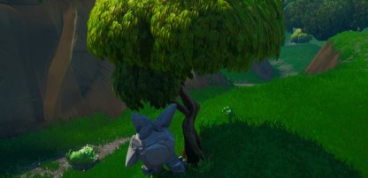 Rock Child, Dog Climbing Trees