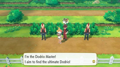 Dodrio Master Trainer