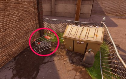 Where Can You Find Shopping Carts