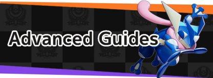 Advanced Guides