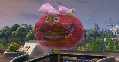 Holographic Tomatohead