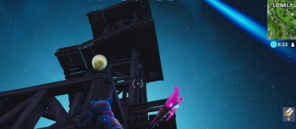 Beside Observation Post At Lonely Lodge