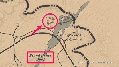 Red Dead Redemption 2 Legendary Animals Hunt Moose