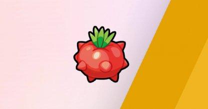 Tamato Berry