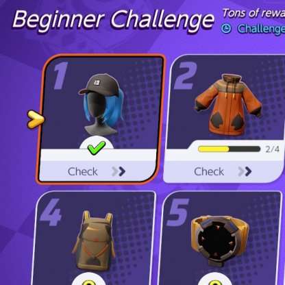 Beginner Challenge Guide
