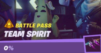 Team Spirit Mission