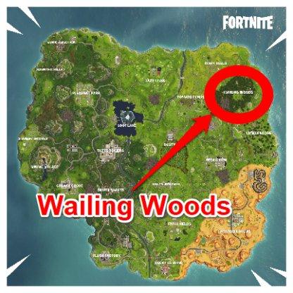 Fortnite Map Wailing Woods