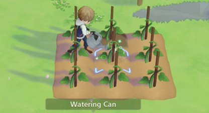 some seeds require water