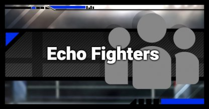 Echo Fighters List - Guide & Differences