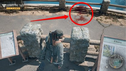 Clue Is Found On The Ledge Of The Lookout