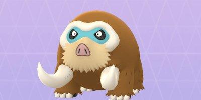 Best Pokemon Vs Rayquaza Mamoswine