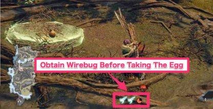 Wirebug