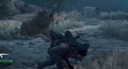 Dodge To Avoid Getting Ripped By Wolves