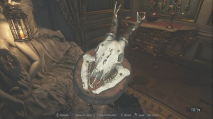 Mounted Animal Skull