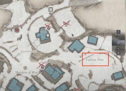 Fallow Plot
