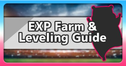 EXP Farm & Leveling Guide