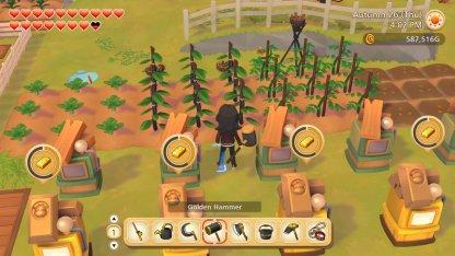 How To Setup Your Farm